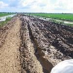 those muddy roads