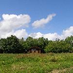 Three lodges set in grassland