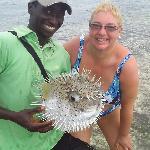 Capitan Findus e il pesce palla