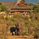 The Lodge from the waterhole