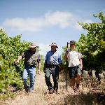 3 generations of the Fromm family solving the problems of the world in the vineyard