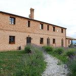Photo of Agriturismo Il Moro degli Alpaca