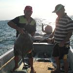 fishing holbox