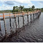Bridge builded by villagers
