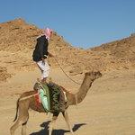 beduin sport