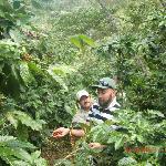 Owners coffee farm