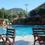 View of the poolarea