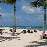 A praia é excelente, com exceto os sargaços que são retirados diariamente da praia deste hotel.