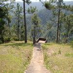 Viewpoint platform