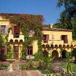 House and gardens, Menton