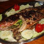 Täglich frischen Fisch vom Markt
