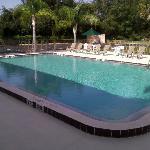 Crystal clear blue pool!