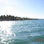 Desde el catamaran