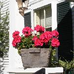 Geraniums around the Inn