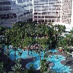 View of the Flamino pool during the day