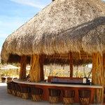 Cerritos Surf Colony