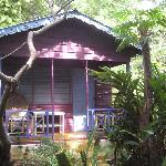 The Breadfruit Cottage