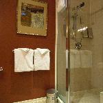 Elm Junior Suite bathroom walk-in shower (only)