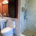 Cedar Master Suite Toto Nexus bathroom