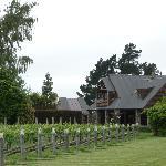 Stonehaven amid vineyards