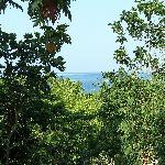 view near the resort