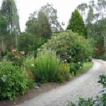 Catlins Farmstay B&B