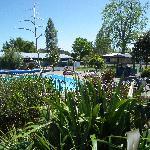 Coromandel Holiday Park