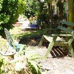 Coromandel Tui Lodge Foto