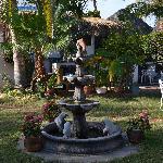 The garden2