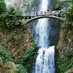 Multnomah Falls,BEAUTIFUL!!