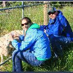 Sarah took one of us feeding the sheep