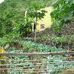 Photo of Casa das Ilhas