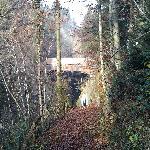 Holzbrücke unterhalb Egg