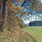 Weg in der Nähe von Degersheim