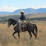 Riding open plains