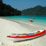 Kayaking and Nature tour