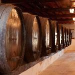 Adega Wine Cellar