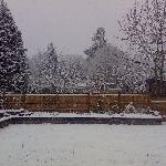 Cringleford Guest House - Back Garden in the Snow!