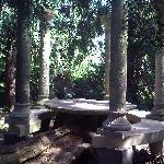 Un petit coin sous les arbres