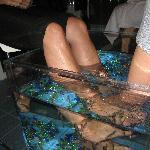 Dr Fish, Un aquarium pour deux