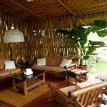 bamboo rancho