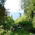 Photo de Ocean Wilderness Inn