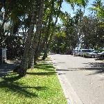 Main Street Palm Cove