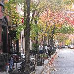 Beautiful tree lined streets of the West Village