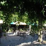Beautiful & Romantic - Lenz Winery