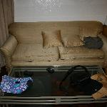 The couch in the room
