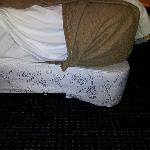 Broken Box Spring & Bed Containing Used Condom