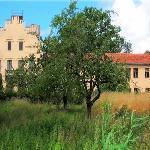 Schloss Petzow / Schlosspark