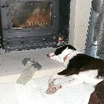 You may have to push Moss out of the way of log burning stove!