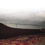 Lovely carpet